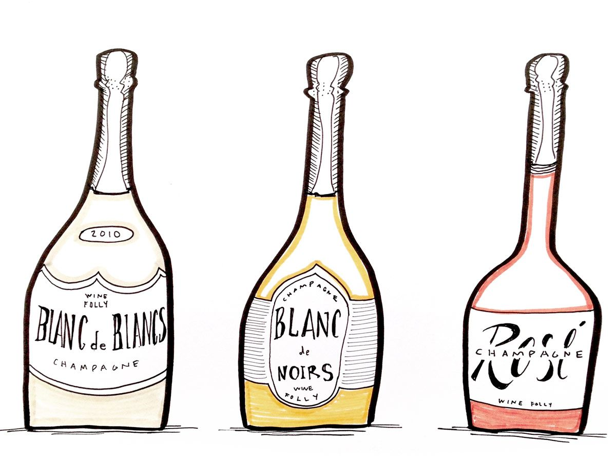 Illustrations of bottles of Champagne Rosé, Blanc de Noirs, Blanc de Blancs by Wine Folly